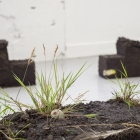SALTS_Installation View 48