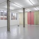 Hanne Lippard Numb Limb Gallery 01