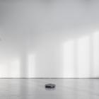 Hanne Lippard Numb Limb Gallery 16