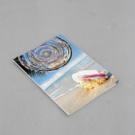 Leo Fitzmaurice, Echo$SHELL, 2013, eviscerated holiday brochure