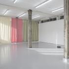 Hanne Lippard Numb Limb Gallery 09