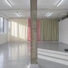 Hanne Lippard Numb Limb Gallery 10