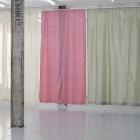 Hanne Lippard Numb Limb Gallery 14