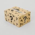 51 Stupid Box web