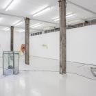 Robertas Narkus_Prospect Revenge_David Dale Gallery_01